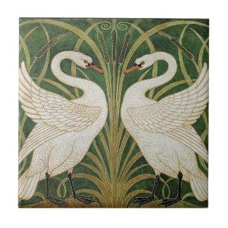 Cisnes, precipitación y iris por la grúa de azulejo cuadrado pequeño