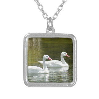 Cisnes que nadan joyeria