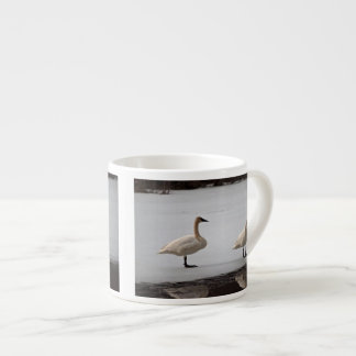 Cisnes que preparan en el borde del agua taza espresso