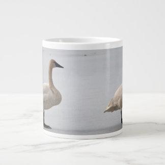 Cisnes que preparan en el borde del agua taza grande