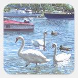 cisnes y barcos del puerto de Christchurch Calcomanías Cuadradas Personalizadas