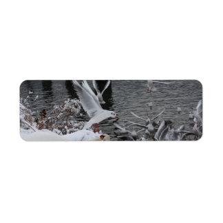 cisnes y gaviotas en la nieve etiqueta de remitente