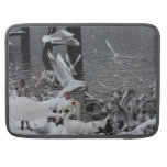 cisnes y gaviotas en la nieve funda para macbooks