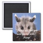 Cita de Esopo y imán adorable del oposum