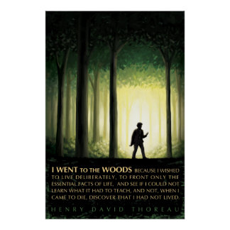 Cita de Henry David Thoreau: Fui a las maderas Póster