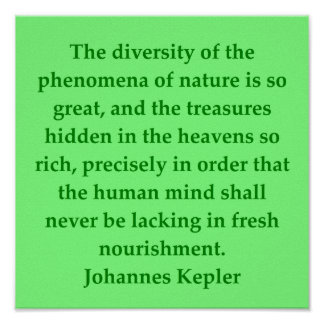 Cita de Johannes Kepler Póster