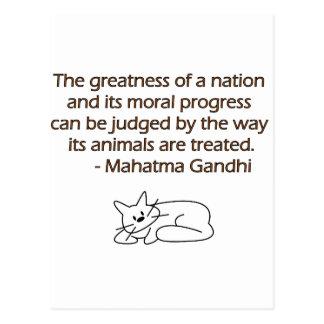 Cita de los animales de Gandhi con el gato Tarjetas Postales