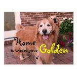 Cita del hogar del golden retriever postales