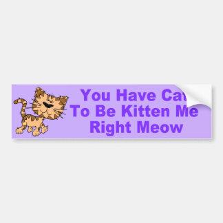 Cita divertida del gato etiqueta de parachoque