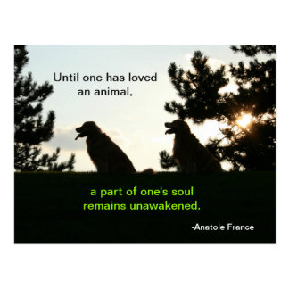 Cita espiritual del mascota del golden retriever tarjetas postales