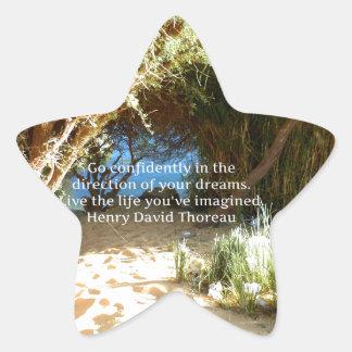 Cita ideal de motivación de Henry David Thoreau Pegatina En Forma De Estrella