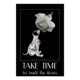 Cita inspirada dálmata del rosa blanco del perrito póster