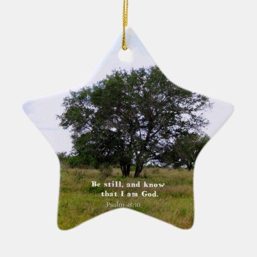 Cita inspirada de la biblia del 46:10 del salmo ornaments para arbol de navidad