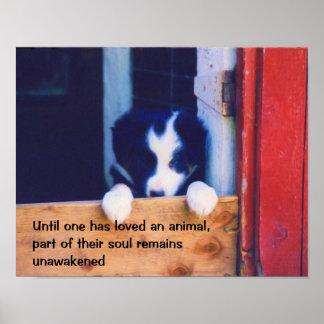 Cita inspirada de los animales lindos del perrito póster