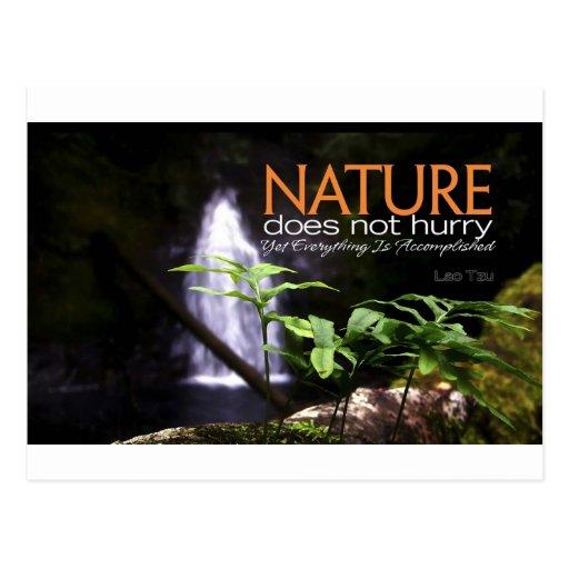 Cita inspirada -- Naturaleza Postal