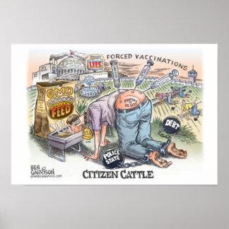 """Citizen Cattle 19"""" x 13"""",  Poster Semi gloss"""