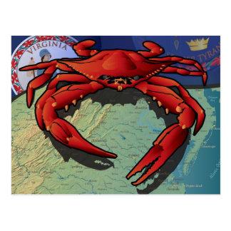 Citizen Crab of Virginia Postcard