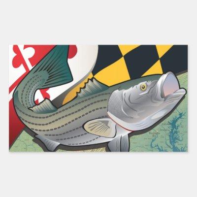 brand new 0c2c0 a69df Chesapeake Bay Striped Bass Rectangular Sticker   Zazzle.com