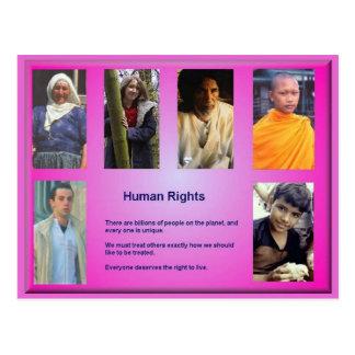 Citizenship, Human Rights Postcard