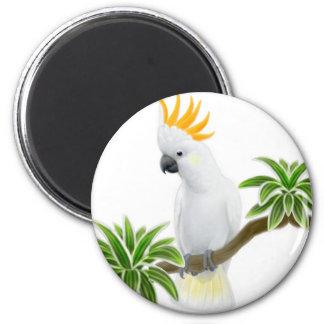 Citron Cockatoo Magnet
