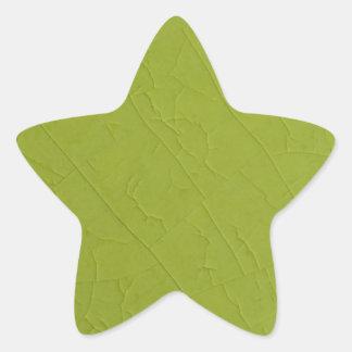 Citron stone cracks star sticker