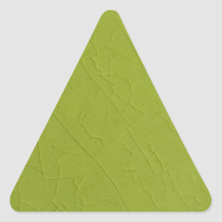 Citron stone cracks triangle sticker