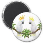 Citron & Sulphur Cockatoo Magnet