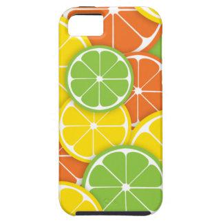 Citrus crush juicy round lemon lime orange slices iPhone SE/5/5s case
