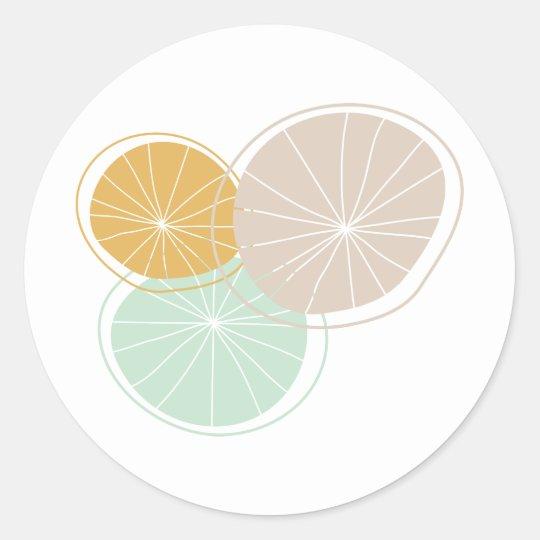 Citrus Delight! Classic Round Sticker