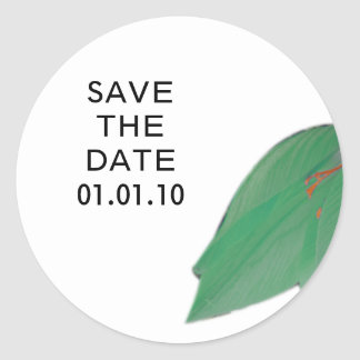 Citrus Flower Save the Date Sticker