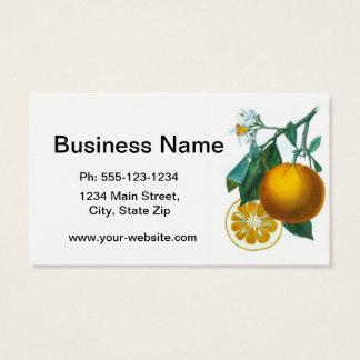 Citrus Fruit Orange Print no. 6 art decor Business Card