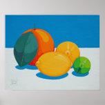 Citrus Fruit Poster