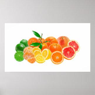 Citrus Fruit Poster - SRF