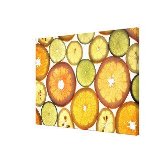 Citrus Fruit Slices Canvas Print