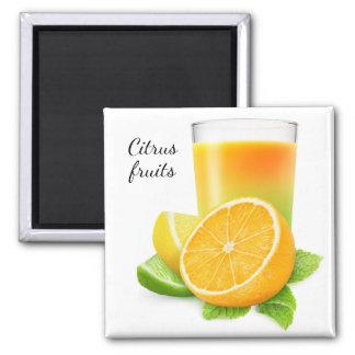 Citrus fruits juice magnet