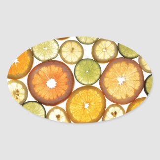 Citrus Fruits Oval Sticker