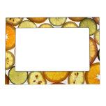Citrus Fruits Picture Frame Magnet