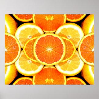 Citrus Fruits Picture Poster