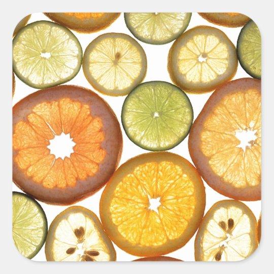 Citrus Fruits Square Sticker