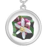 Citrus Lemon Blossom Poster Image of Flower Custom Jewelry