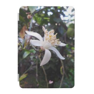 Citrus × limon iPad mini cover