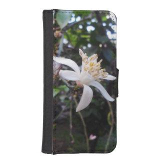 Citrus × limon iPhone SE/5/5s wallet case