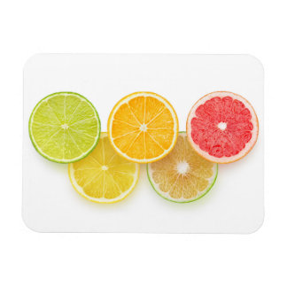 Citrus Olympics Magnet