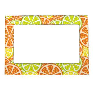 Citrus Pattern 2 Magnetic Frame