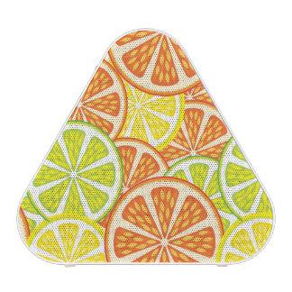 Citrus Pattern 2 Speaker