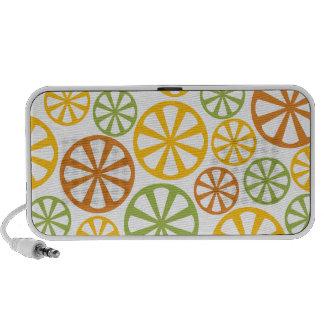 Citrus Pattern custom Doodle speaker