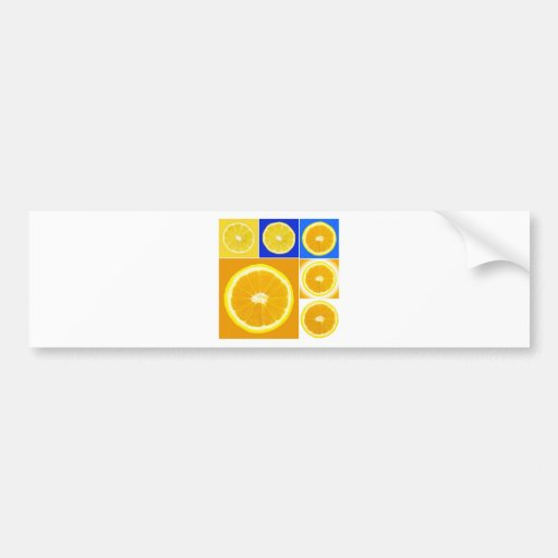 citrus slice car bumper sticker
