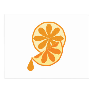 Citrus Slice Postcard