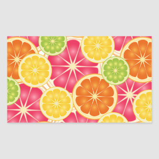 Citrus Rectangle Stickers