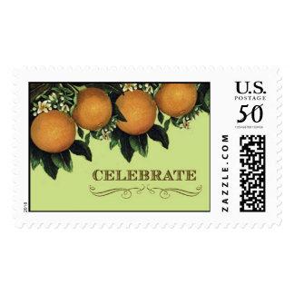 Citrus Sweet Celebrate Stamp by Loralee Lewis